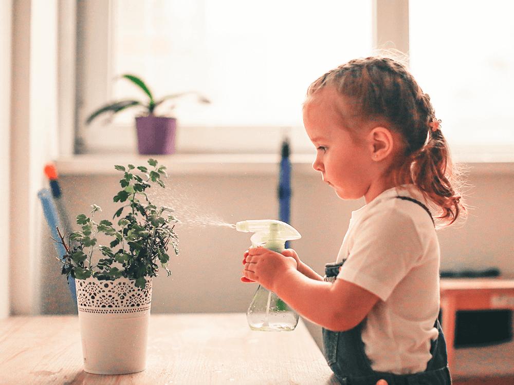 Imagen actividad 2: Niña rociando y cuidando planta en casa